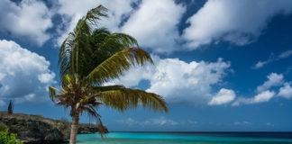 Jak spędzić z towarzyszami udane wakacje i należycie wypocząć?